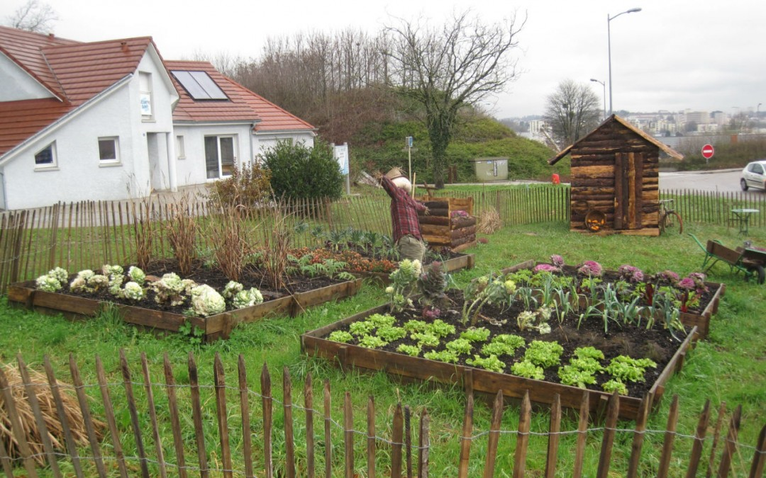 Potager am nagement de jardin for Amenagement jardin carre
