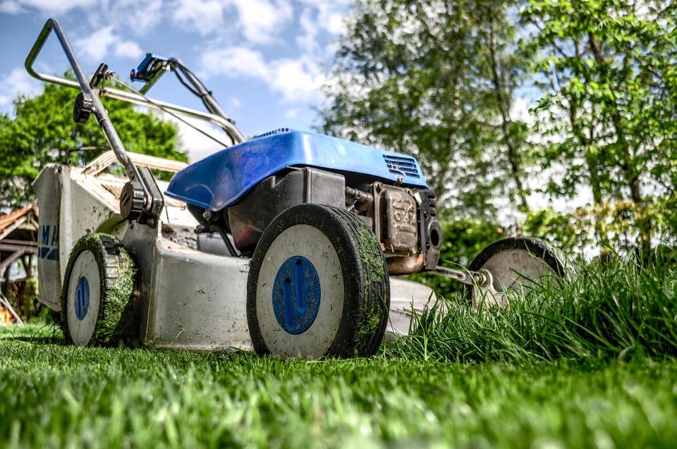Comment redonner un coup de neuf à votre jardin ?
