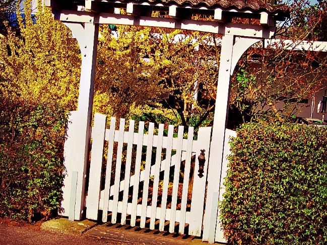 3 bonnes raisons de préférer l'aluminium pour le portail de son jardin