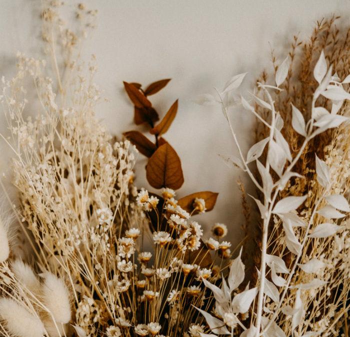 Tendance : la folie des fleurs séchées